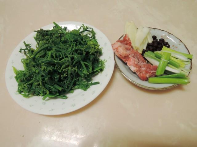 10菜市場植物學-蕨C