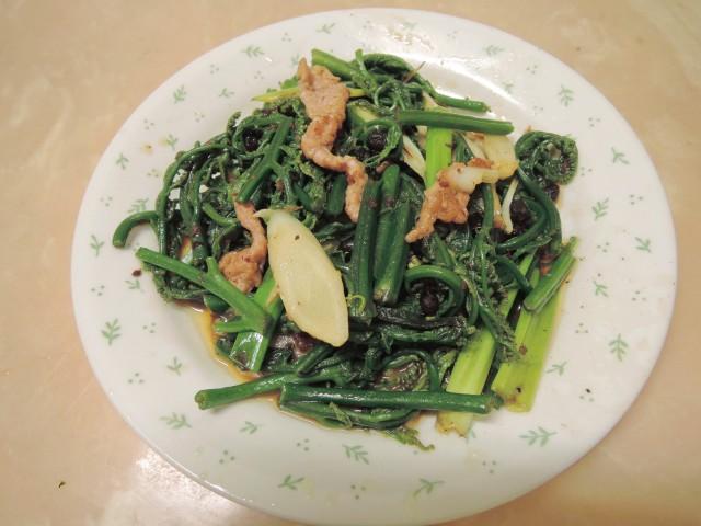10菜市場植物學-蕨D