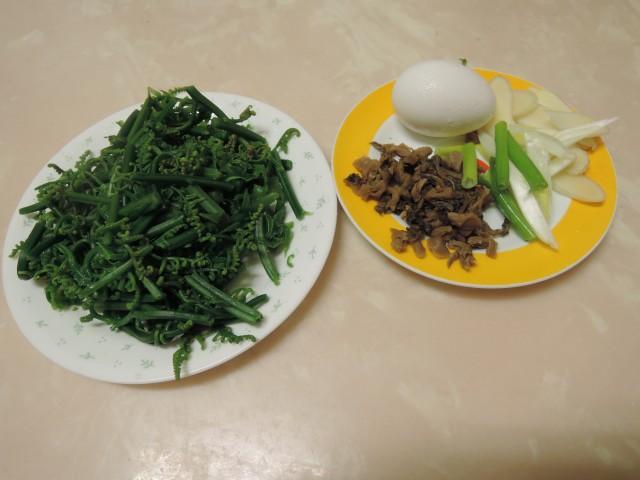 10菜市場植物學-蕨E
