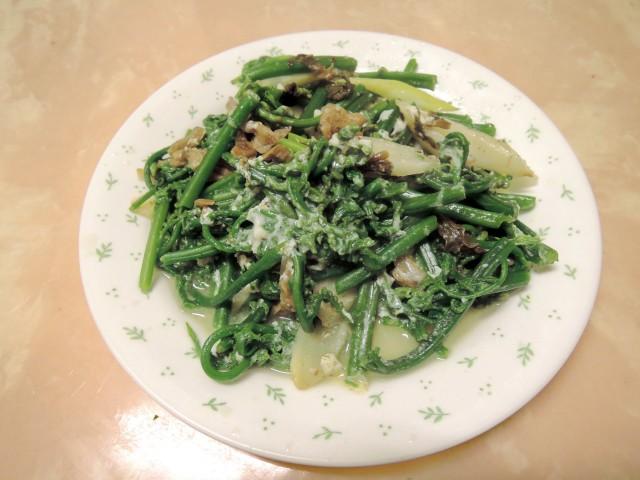 10菜市場植物學-蕨F