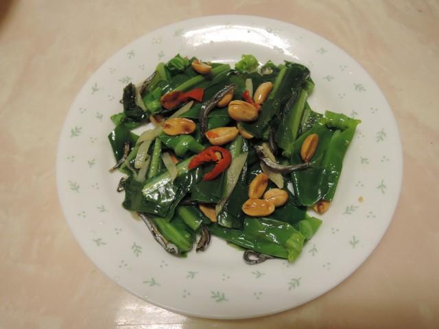 10菜市場植物學-蕨H