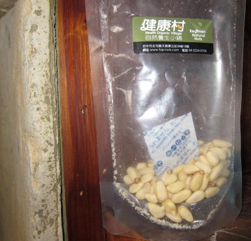 103裸子植物B00松子
