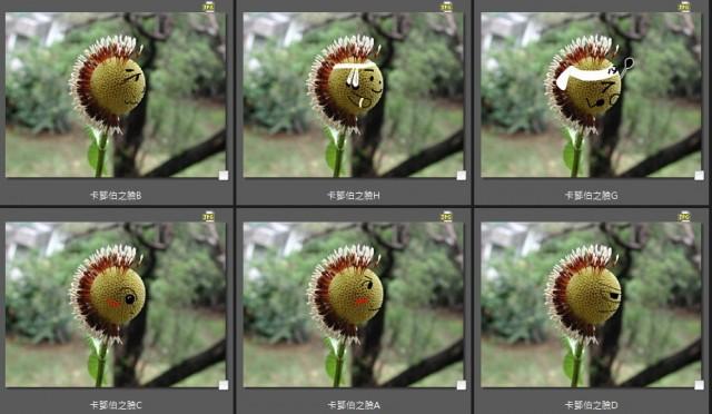 103賞卡鄧伯木09