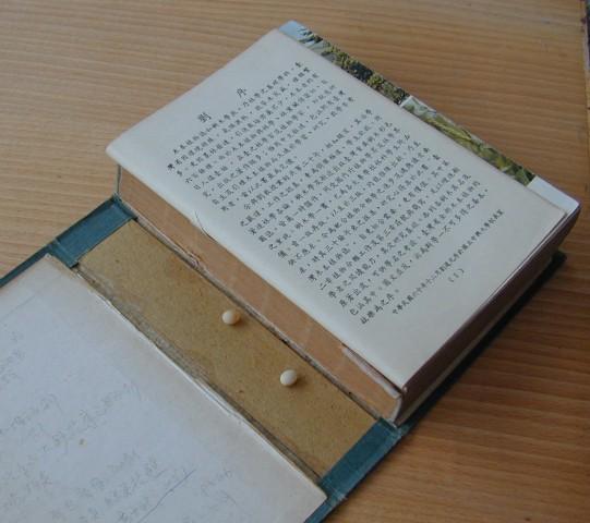 96書與壁虎01
