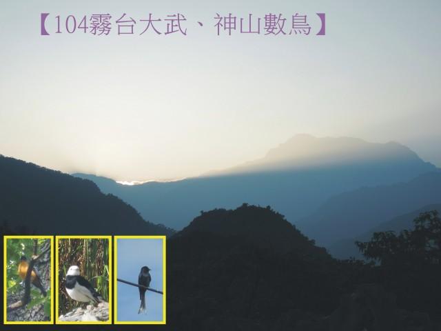 104新年數鳥-霧台00