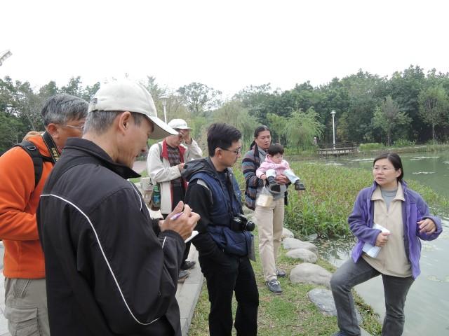 認識千禧公園水生植物-賴宜玲老師