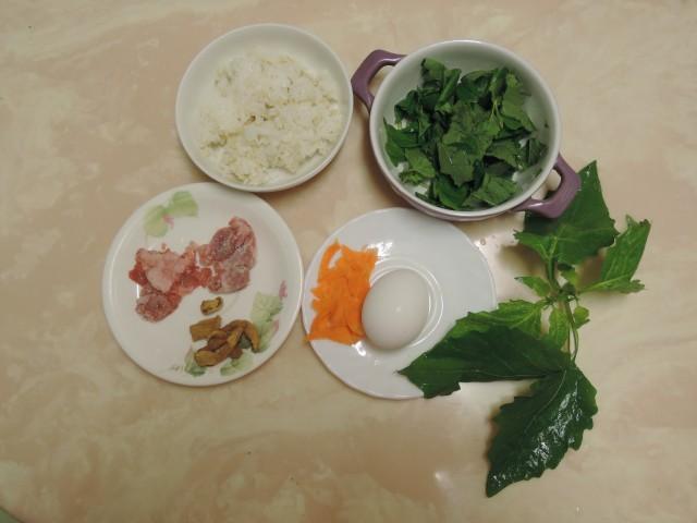104黑甜仔菜-光果龍葵11
