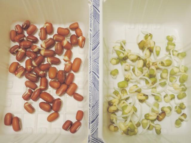 紅豆與綠豆A10