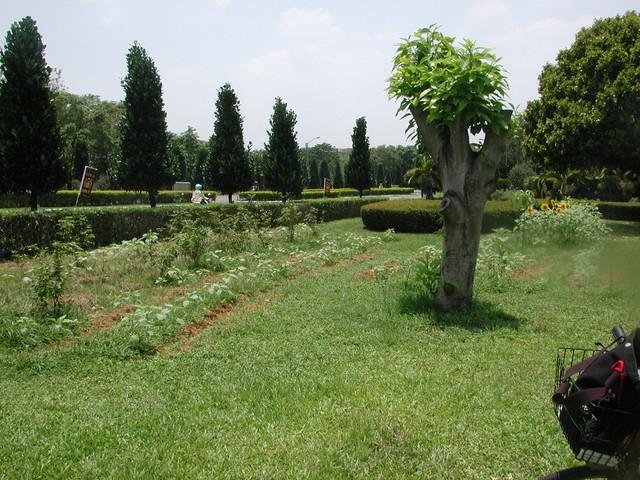 分隔島與秘密花園