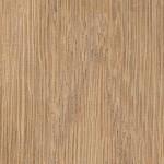櫟木顯微照片