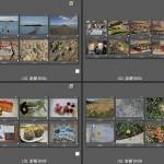 102 澎湖 景與物