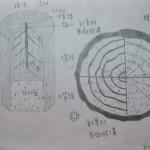 102 木材三切面作業展