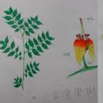 98植物學實習1