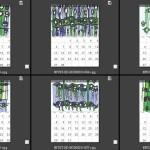木材顯微構造創意圖騰月曆(1)-洪煜程