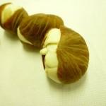馬拉巴栗(種子盆栽) Malabar-chestnut、Pachira Nut