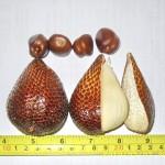 沙拉卡椰子 (別名: 蛇皮果 ) SalakSalak,Buak Salak,Snakefruit