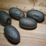 裂葉蘋婆 Hazel sterculia , Hazel bottle tree , Horse almond