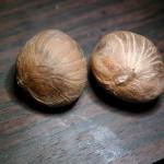 馬拉巴栗 Malabar-chestnut、Pachira Nut