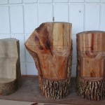 三切面(木材的三切面) three sections of wood