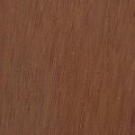 黃金櫸木 Bilinga