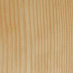 黃松 Yellow pine