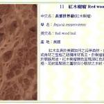 紅木樹瘤(長葉世界爺) Red wood burl